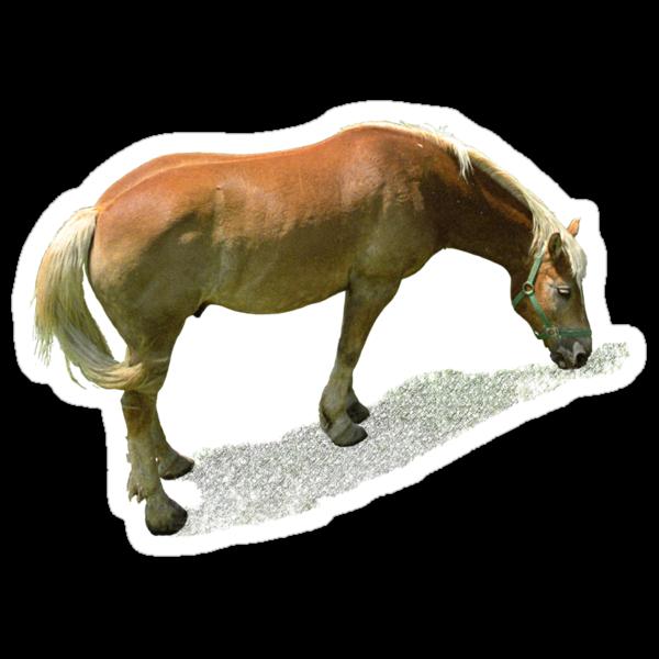 Horse from Kristberg (T-Shirt & iPhone case) by Lenka
