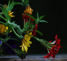 pretty flowers by deville