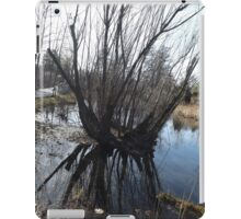 Wetlands, New York Botanical Garden, Bronx, New York iPad Case/Skin