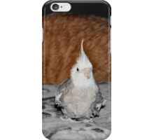 Good thing Arnie doesn't know I taste like chicken! :) iPhone Case/Skin
