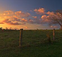 Maleny Sunset by Ben Messina