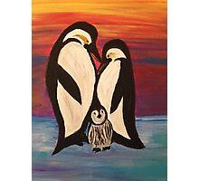 Arctic Penguin  Photographic Print