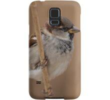 House sparrow (Passer domesticus) Samsung Galaxy Case/Skin
