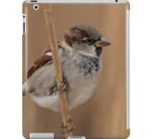 House sparrow (Passer domesticus) iPad Case/Skin