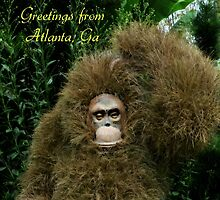 Greetings From Atlanta, Ga. by Scott Mitchell