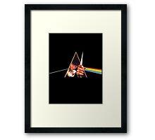 The Dark Side of the Orange Framed Print