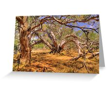 There are Many Ways to Grow. Greeting Card