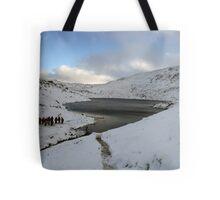Winter on Mangerton Tote Bag
