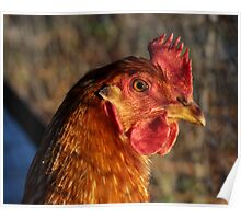 Hennypenny Poster