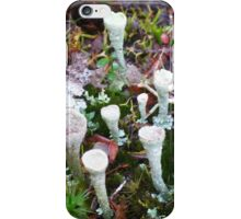 The Magic of the Forest Floor iPhone Case/Skin
