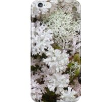 Snow Lichen - As delicate as Lace iPhone Case/Skin