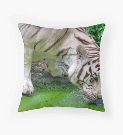 Thirsty Throw Pillow