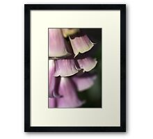 Bells of Nature Framed Print