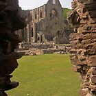 A View of Tintern Abbey by caymanlogic