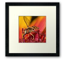 Psychedelic Supper ! Framed Print