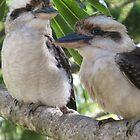 Laughing Kookaburras by Marilyn Harris