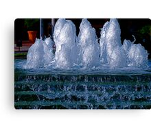 Ice Sculptures Canvas Print