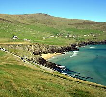 Slea Head view  by John Quinn