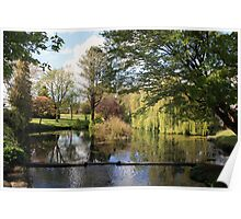 Japenese Gardens pond view Poster