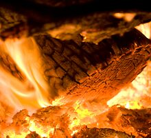 Camping Fire by Dene Wessling