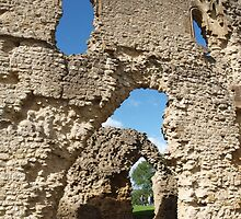 Sherborne Old Castle (12) by kalaryder