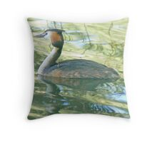 A Greater Crested Grebe Throw Pillow
