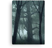 A Message Left Unsaid Canvas Print