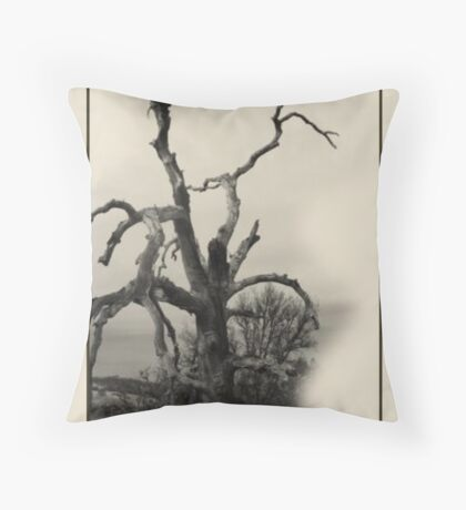 When You Were Young. Throw Pillow