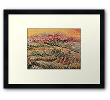 Golden Provence Framed Print
