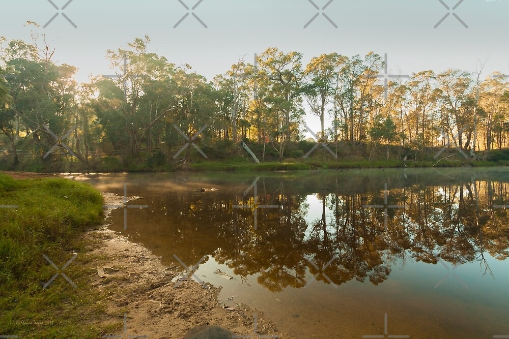 Blackwood Reflections #4, Bridgetown, Western Australia by Elaine Teague