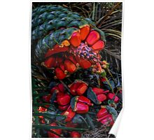 Cycad Seeds. Poster
