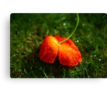 Water Droplet Petals Canvas Print