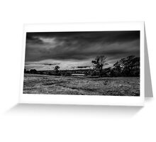 Mist on the Plains Greeting Card