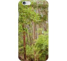 Changing Scenes iPhone Case/Skin