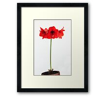 Just in Time for Mothering Sunday Framed Print