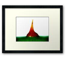 sharpie Framed Print