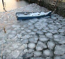 Ice by Kristi Kinsella