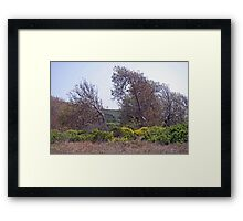 Evidence of destruction Framed Print