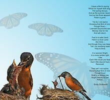 Spring of Robins by Kimberly Palmer
