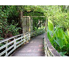 Nature Entrance Photographic Print