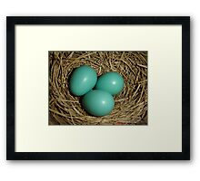 Robins Youth Framed Print