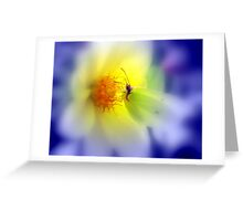 ATTACHMENT. Greeting Card