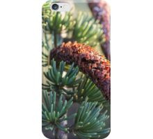 cone in the forest iPhone Case/Skin