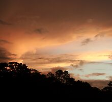 Rio Jatapu Sunset, Amazon Rain Forest, Brazil by Alex Evans