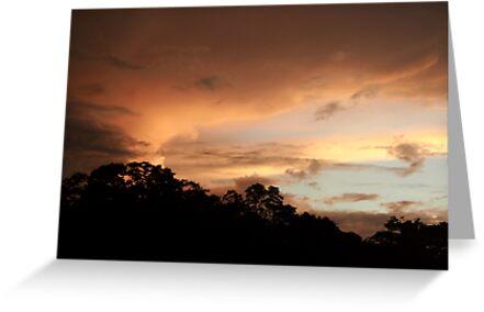 Rio Jatapu Sunset, Amazon Rain Forest, Brazil by Alex Evans