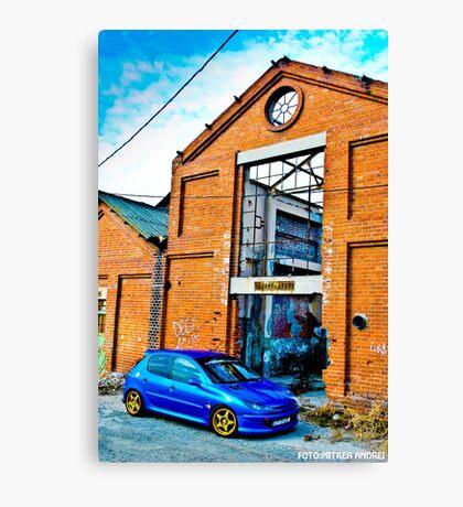 Peugeot 206 Canvas Print