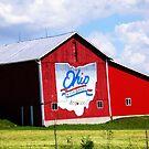 Ohio by rmcbuckeye