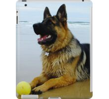 Mr Max at the Beach iPad Case/Skin