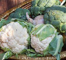 cauliflower in the basket by spetenfia