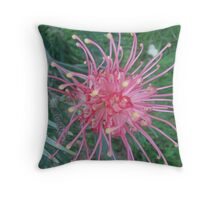 Soft Red Grevillea Throw Pillow
